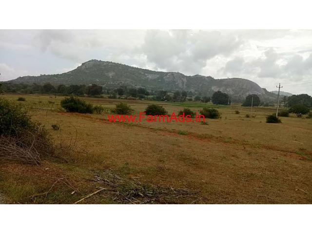 4 Acres Agriculture land for sale near Avalabetta