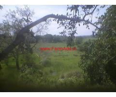 1 Acre 31 Guntas Agriculture Land for sale at Varuna