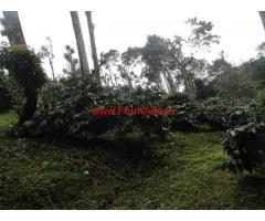 7 Acres Coffee Plantation for sale at Coorg - Madikeri