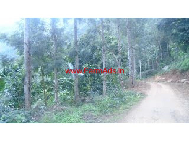 3 Acres Coffee, Pepper Estate for Sale in Kodaikanal