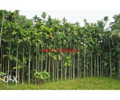 6 Acres 11 Cents Agriculture Land for sale at Kallamundkur near moodabidri