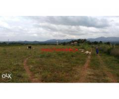 2 Acres Agriculture Land for sale in Denkanikottai