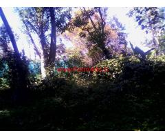 Coffee, Pepper and Fruits Farm Estate for Sale in Kodaikanal