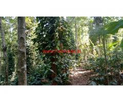 1.5 acre coffee estate for sale, near somwarpete, coorg