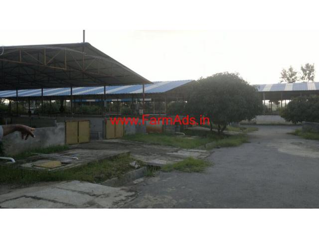 28 Acres Farm House, Dairy Units and Bunglow for sale at Nelamangala