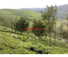 27 Acres well maintained tea estate for Sale at Coonoor, Ooty