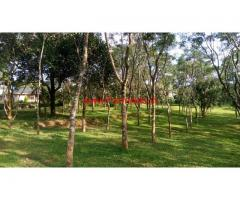5 Acre Rubber Plantation for sale in Wayanad