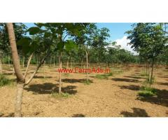 2 Acres Rubber Plantation for sale in Mananthavady - Wayanad