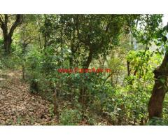 12 acre land for sale near Balehonnur- shringeri road