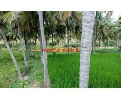 11 acres coconut farmland for sale near Shoolagiri. Hosur