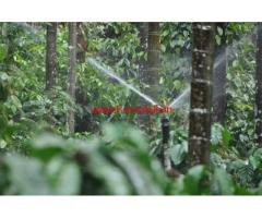 13 acre plantation for sale  on Balehonnur- Shringeri road