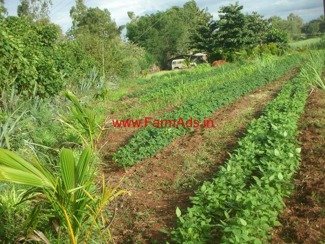 Farm Land in Near Gokak - Belgaum Dist, Karnataka