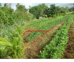 Farm Land in Near Gokak - Belgaum Dist, Karnataka