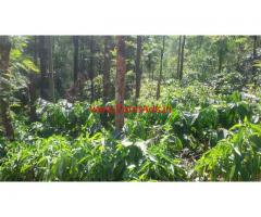 25 Acres Coffee Estate for sale in Madikeri towards Mangalore road
