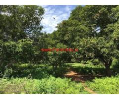 58 Acres Agriculture Land for sale Arakonam near Kanchipuram