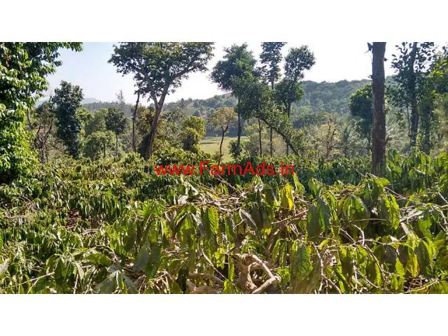 2 Acre Coffee Estate for sale in Sakleshpura