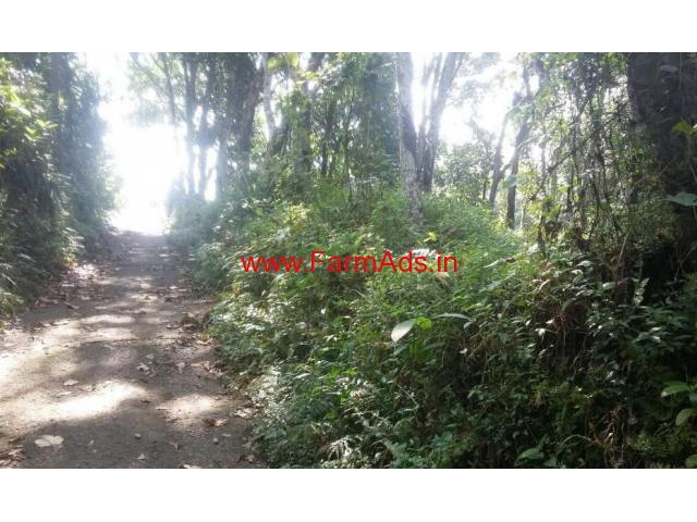 1.5 Acres Rubber Estate for sale in Mallassery - Pathanamthita