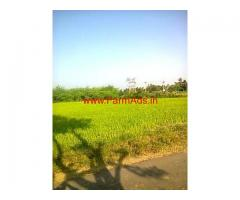 Agriculture Paddy Land for sale in Kancheepuram