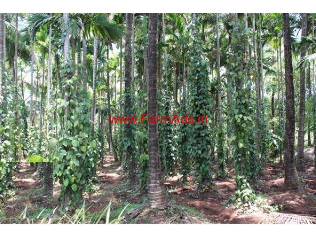 4.75 Acres Farm Land for sale in Mullerya - Kasargod
