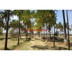22 Acres Farm Land with Farm House for sale in Hiriyur