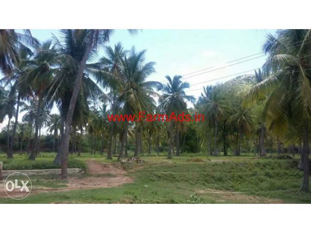 9.6 Acres Farm Land for sale near Ambur - Tamil Nadu