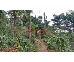 8 Acre Coffee Estate for sale in Sakleshpura