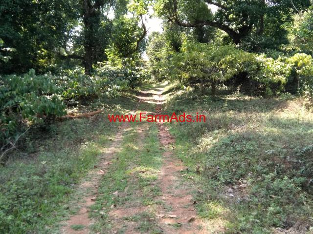 10 acres of coffee plantation close to Madikeri town for  sale