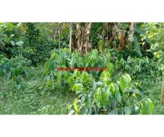 12 Acres Coffee estate for sale in Belur