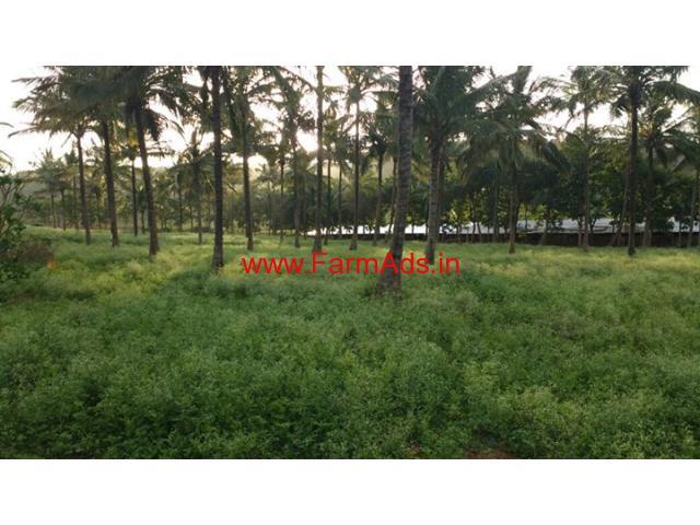 3 Acres Farm Land next to Bandipur for sale