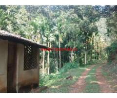 276 acres Company owned rubber estate near Mangalore