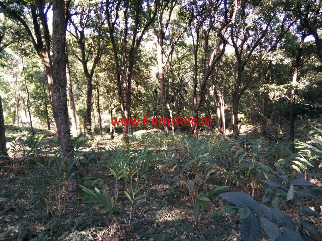 4.5 Acres vacant land for sale near Madikeri