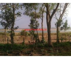 3 Acres Farm Land for sale near Shettihalli Church - Hassan