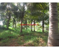 6 Acres Farm land with Farm House for sale in Palamedu - Madurai