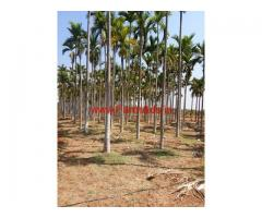2 acre agriculture land for sale near Mayasandra, Turvekere,