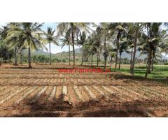 3 acres Cultivated agricultural farm land for sale in kollegal