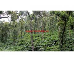 100 Acres Cardamom Estate for sale in Sivagiri - Tirunelveli