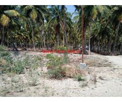 5 acre well maintaned coconut farm for sale in Gudimangalam