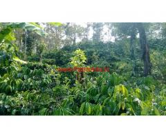 2 Acre Coffee Estate for sale in 6 KMS from Sakleshpura