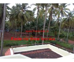 3 Acres Farm land for sale at Pollachi