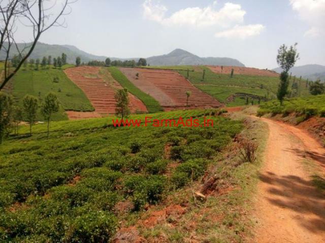3 Acres Tea Estate for sale in Doddabetta -- Ooty