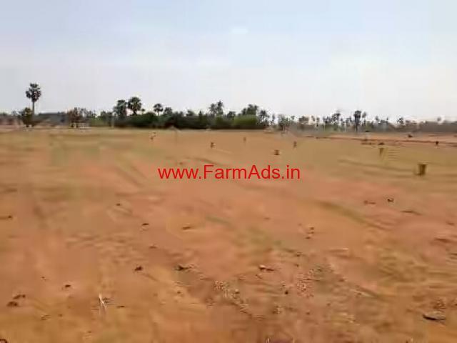 3 acers agriculture land at Kasinayana mandal - Kadapa Kadapa