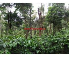 16 Acres Coffee Estate for sale in Mudigere.