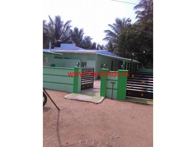 6.5 Acres Coconut Farm with Farm House for sale in Patapampati - Pollachi
