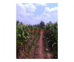 3.25 Acre Farm Land for sale in Pollachi