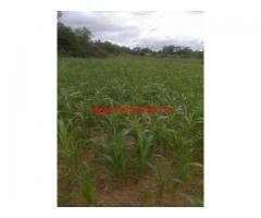 30 Acres Farm Land for sale in Palacode - Dharmapuri