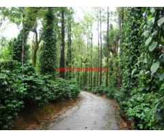 30 cents Farm land for sale in kodaikanal with good income