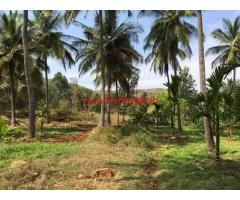 4 acres Coconut farm for sale in KB cross, Tumkur
