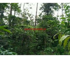 93 Cent farm land for sale in kodaikanal area