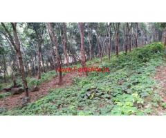 3.36 Acres Rubber Estate for sale at Konni - Pathanamthitta