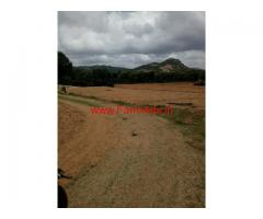 6 acres agricultural land for sale near chickballapur , Avalabetta